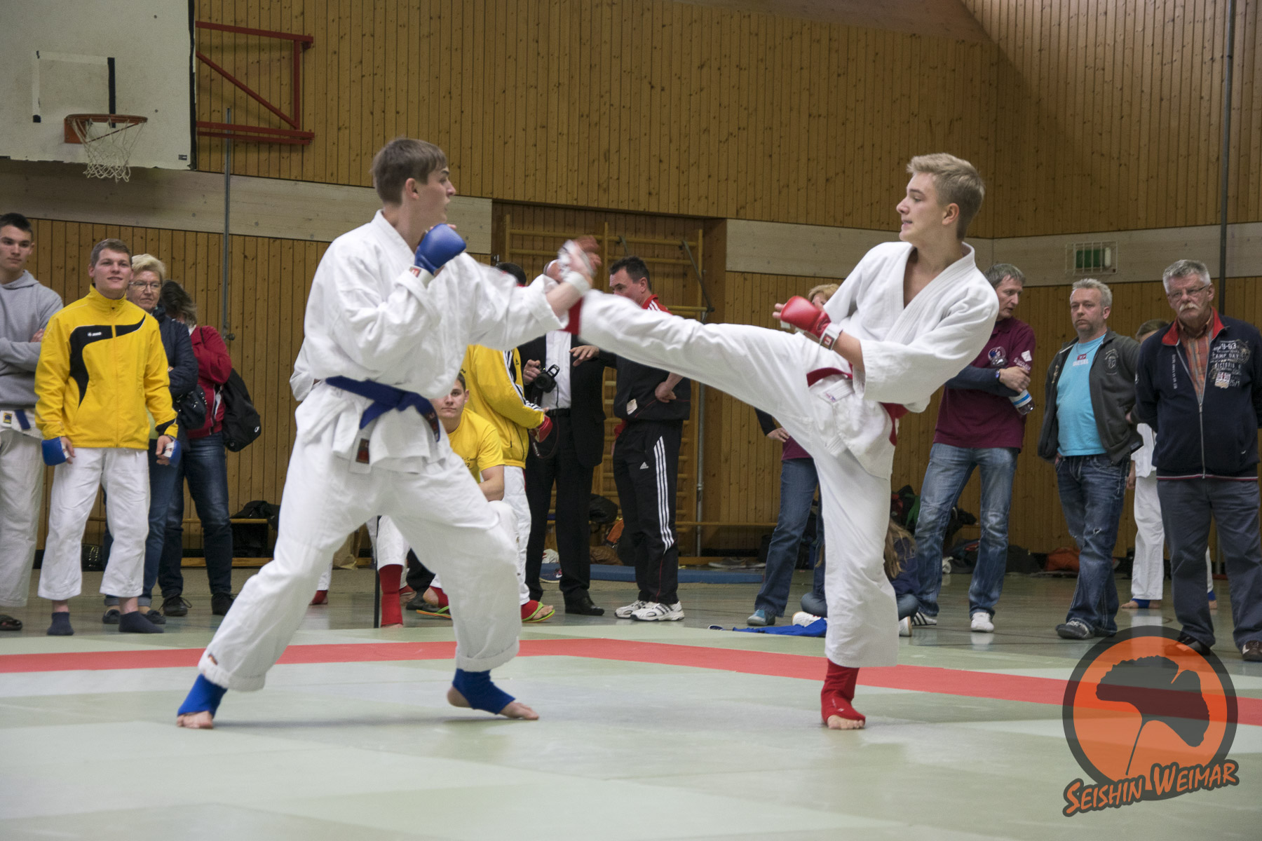 LEM 2015 in Sachsen-Anhalt